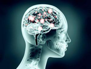 Brain-neuron.flip_